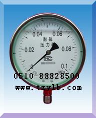 耐震耐硫压力表